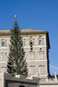 Папа Римский и елка