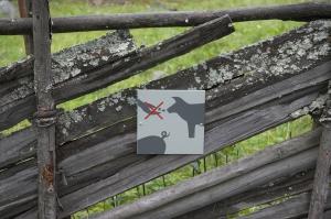 На самом деле за забором были козы...