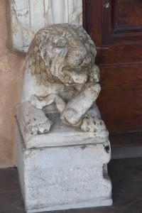 Добрые звери в Сан-Лоренцо