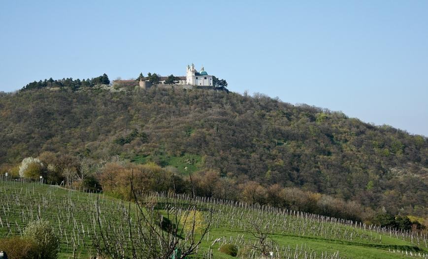 Виноградники и монастыри